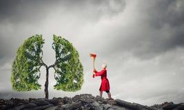 Protegga le foreste Fotografia Stock Libera da Diritti