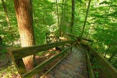 Protegge l'escursione del canyon del parco di stato Fotografia Stock