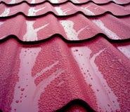 Proteggendo la casa dalla pioggia e dal fango Immagine Stock Libera da Diritti