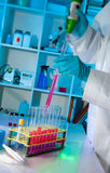 Protein assay in biochemical lab. Protein assay in scientific laboratory royalty free stock photography