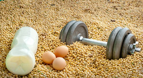 Protein competition Stock Photos