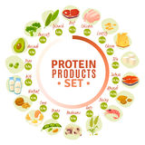 Protein Containing Products Flat Circle Diagram Stock Photography