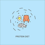 The protein diet. Image of chicken, fish and eggs on a blue background. Vector illustration Stock Photography