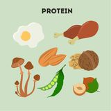 Protein food set. Meat and mushrooms, eggs and nuts Royalty Free Stock Photos