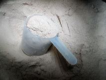 Protein powder. For bodybuilding, fitness Royalty Free Stock Image