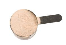 Protein powder Royalty Free Stock Photo