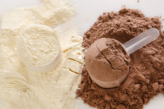 Protein powder Royalty Free Stock Image