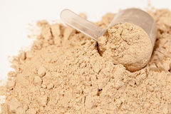 Protein powder with scoop Royalty Free Stock Photo