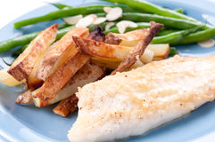Protein rich tilapia fish fillet with vegetables Stock Photography