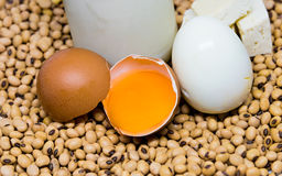 Protein source: egg and soy product Royalty Free Stock Images