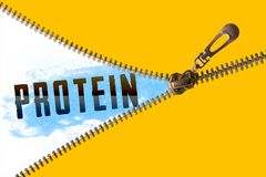 Protein word under zipper. Open golden zipper and showing paint blue with protein word stock illustration