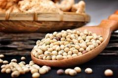 Proteina di soia Immagine Stock Libera da Diritti