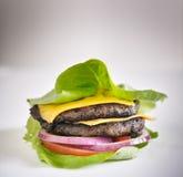 Proteinowy hamburger sałaty opakunek z polewami zdjęcie royalty free