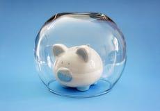 Proteja seu dinheiro Foto de Stock Royalty Free