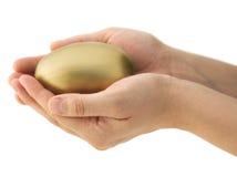 Proteja seu investimento do ovo de ninho imagem de stock