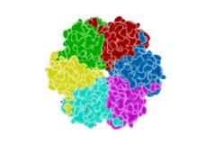 Proteína Foto de Stock