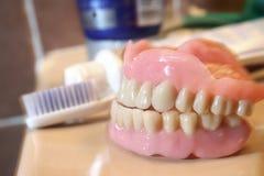 Protesi dentaria artificiale Fotografia Stock Libera da Diritti