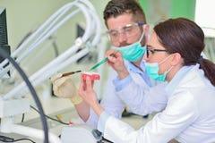 Protesi dentaria, protesi dentarie, attività di protesi Mani di protesi mentre lavorando alla protesi dentaria Fotografie Stock Libere da Diritti
