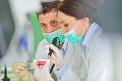 Protesi dentaria, protesi dentarie, attività di protesi Mani di protesi mentre lavorando alla protesi dentaria Immagini Stock Libere da Diritti