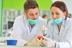 Protesi dentaria, protesi dentarie, attività di protesi Mani di protesi mentre lavorando alla protesi dentaria Fotografia Stock Libera da Diritti