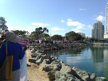 Protest on the bay with sines. Workers united on the bay Royalty Free Stock Images
