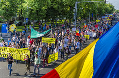 Protest in Bucharest against illegal logging Royalty Free Stock Photography