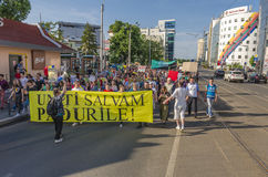 Protest in Bucharest against illegal logging Stock Image
