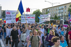 Protest in Bucharest against illegal logging Royalty Free Stock Image