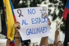 Protest gegen Ecuador-Regierung Stockbild