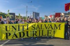 Protest i Bucharest mot olagligt logga arkivfoto