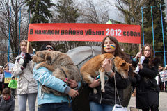 Protest march against murder of homeless animals Stock Photography