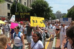 Protest March in DC. Thousands took to the streets of Washington, DC for the Families Belong Together March to protest the separation of families at the border royalty free stock photo
