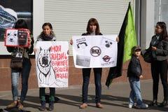 protesta de la Anti-piel Fotografía de archivo libre de regalías
