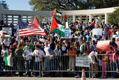 Protesta di guerra di Peacefull Immagine Stock