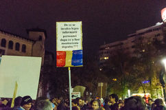 Protesta rumana 09/11/2015 Foto de archivo libre de regalías