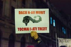 Protesta rumana 09/11/2015 Fotografía de archivo libre de regalías