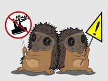 Protestando hedgehogs Fotografia de Stock