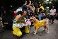 Protestas brasileñas de la calle Imagen de archivo libre de regalías