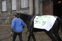 PROTESTATION PAR DES SPORTS DE CHEVAL Photo stock