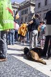 Protesten samlar frihet och självständighet Spanien Catalonia Barcelona Fotografering för Bildbyråer