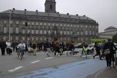 PROTESTEN SAMLAR HUNDEN GÅR MOT HUNDLAG Royaltyfri Fotografi