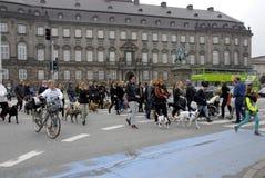 PROTESTEN SAMLAR HUNDEN GÅR MOT HUNDLAG Arkivfoto