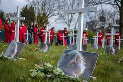 Protestera mot djur provning på protesten mot djur provning Fotografering för Bildbyråer