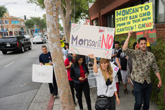 Protesters rallied in the streets against the Monsanto corporation. Stock Photos