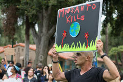 Protesters rallied in the streets against the Monsanto corporation. Royalty Free Stock Photos