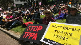 Protesters in Rally against TPPA trade agreement in Auckland stock video footage
