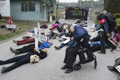 KInder Morgan protesters stage a die in at the Kinder Morgan tank farm on Burnaby Mountain, BC. KInder Morgan protesters stage a die in on May 16 to illustrate royalty free stock photography