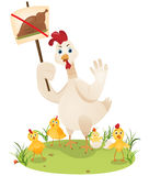 Protesting chicken Royalty Free Stock Photography