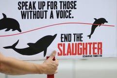 Protesto da caça do golfinho. Imagens de Stock Royalty Free