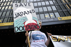 Protesto da caça do golfinho. Fotografia de Stock Royalty Free